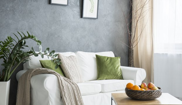 Cozy living room with grey wall, white sofa and green additions